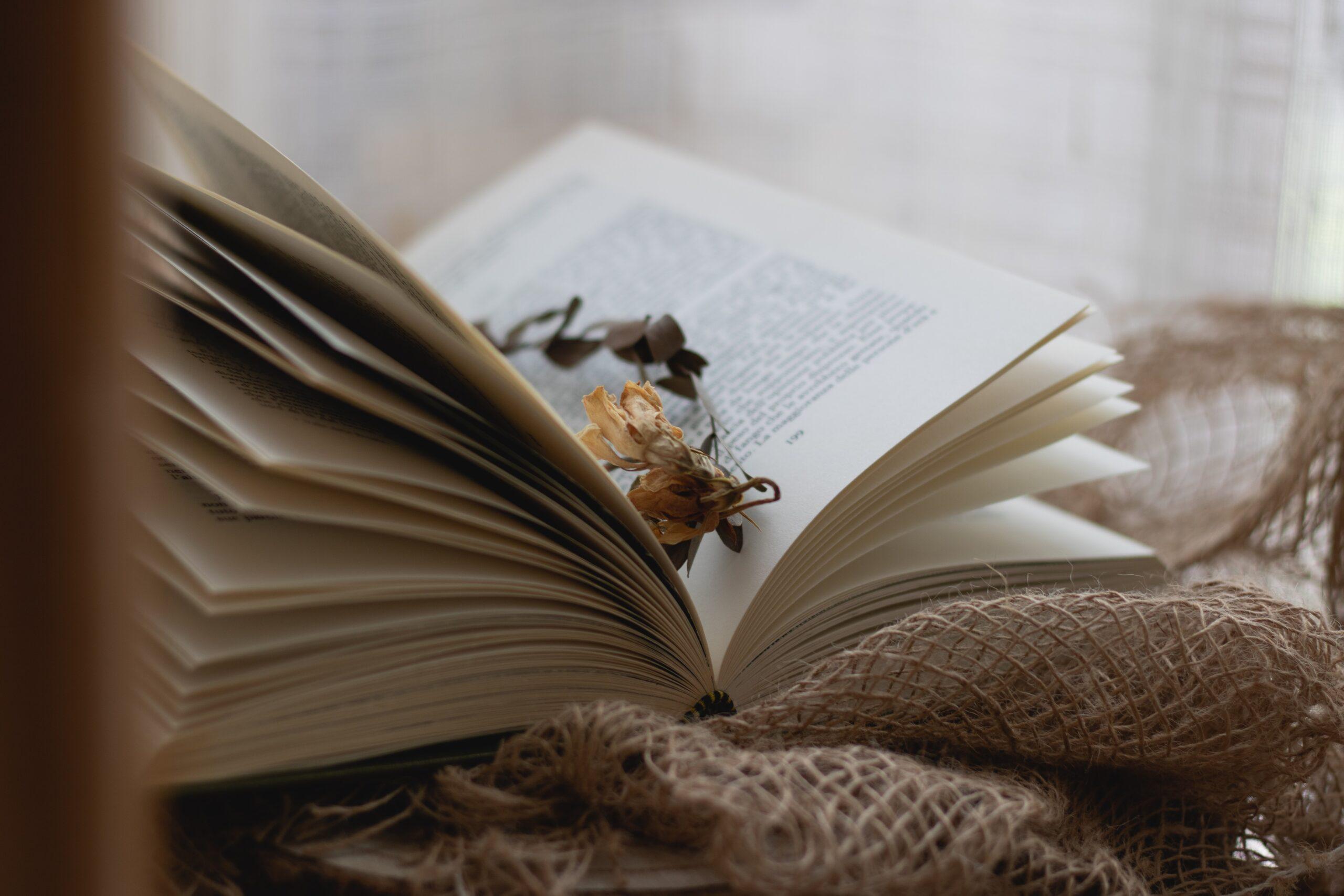 10 fantasias para ler até o final do ano
